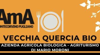 VECCHIA QUERCIA BIO – AZIENDA AGRICOLA BIOLOGICA, AGRITURISMO